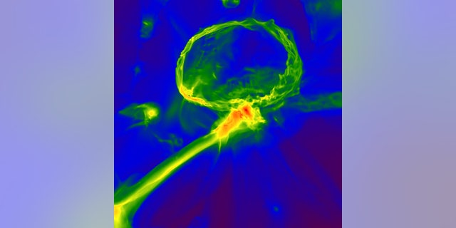 Snapshot from a simulation of the first stars in the universe, showing how the gas cloud might have become enriched with heavy elements. The image shows one of the first stars exploding, producing an expanding shell of gas (top) which enriches a nearby cloud, embedded inside a larger gas filament (center). The image scale is 3,000 light-years across, and the color map represents gas density, with red indicating higher density. (Britton Smith, John Wise, Brian O'Shea, Michael Norman, and Sadegh Khochfar)
