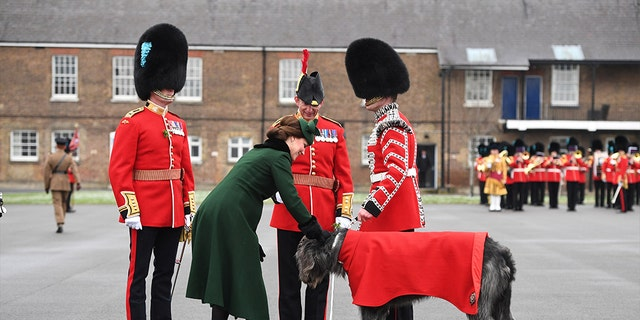 She appeared pleased to meet the Irish Guard's mascot, an Irish Wolfhound.