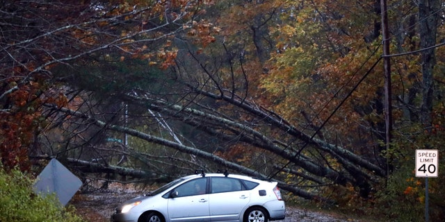 A motorist turns around after finding downed trees blocking Flying Point Road during a storm in Freeport, Maine