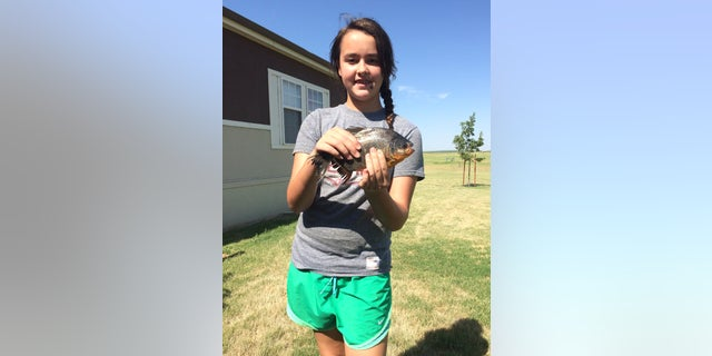 Kennedy Smith, of Lindsay, Okla, holds a pacu, a native South American fish she caught in a southwestern Oklahoma lake in Caddo County, Okla. Game Warden Tyler Howser said the pacu is considered an invasive species and was destroyed.
