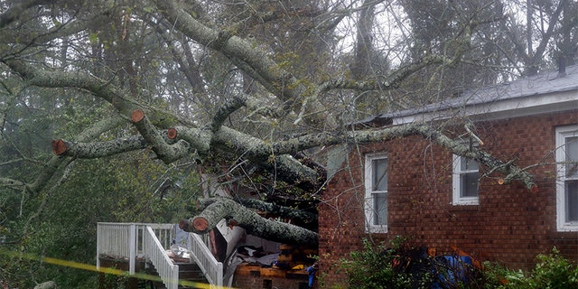 A fallen tree is shown after it crashed through the home where a woman and her baby were killed in Wilmington, North Carolina, after Tropical Storm Florence made landfall on Friday.