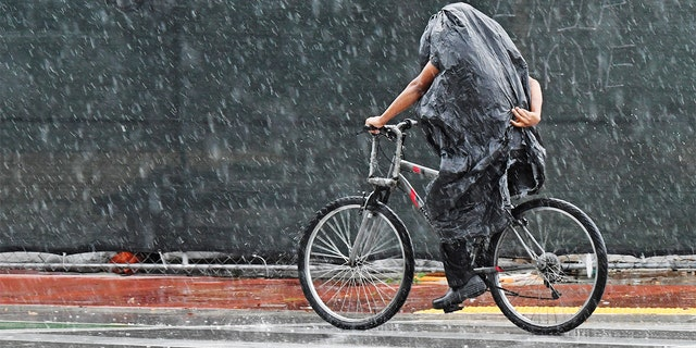 A cyclist tries to stay dry along Collins Ave. in Miami Beach, Fla., on Friday.