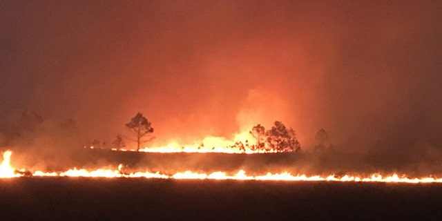 Military units conducting training exercises at Avon Park Air Force Range accidentally sparked a fire Wednesday afternoon that has since grown to cover 4,000 acres in Florida.