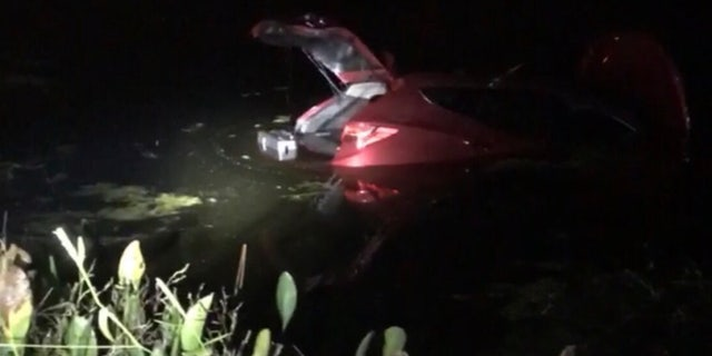 Two Florida officers dove into the water, shattered car window and pulled an 82-year-old driver to safety.