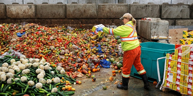 Researchers categorized waste in 22 different food groups and found that fruits, vegetables and mixed fruit and vegetable dishes were wasted most, equaling 39 percent of the total.