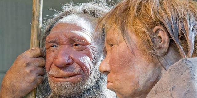 "File photo - This March 20, 2009 photo shows reconstructions of a Neanderthal man named ""N,"" left, and woman called ""Wilma,"" right, at the Neanderthal Museum in Mettmann, Germany."