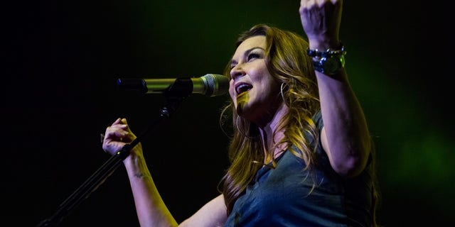 """Gretchen Wilson allegedly got """"belligerent"""" toward troopers after getting off the plane in Connecticut."""