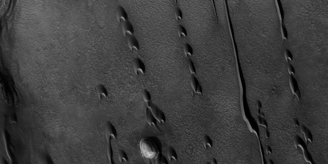 Barchan dunes march across a plain in the Hellespontus region, west of Hellas basin, on Mars. The orientation of their horns indicates consistent winds out of the east, blowing top to bottom in this image captured by the Mars Reconnaissance Orbiter. Sunshine lights the steep slopes of the leeward, or downwind, faces, on the dunes' lower sides. The dunes migrate with the wind, sometimes merging or extending long fingers that spawn new dunes. (Credit: NASA/JPL/University of Arizona)