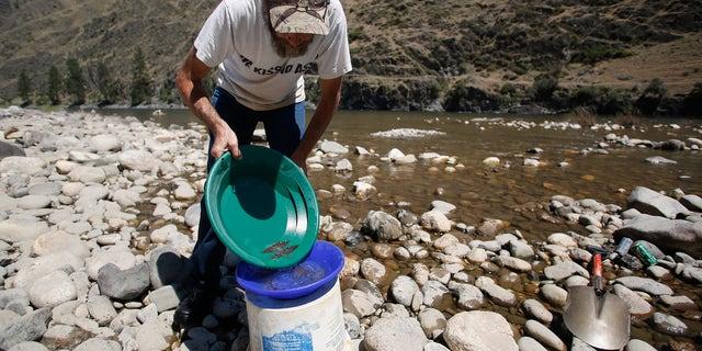 July 3, 2014: B. Dennis Dutcher pans for gold along the Salmon River near Riggins, Idaho.