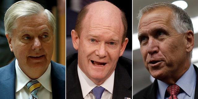 Sens. Lindsey Graham, R-S.C., Chris Coons, D-Del., and Thom Tillis, R-N.C. co-sponsor the legislation with Cory Booker, D-N.J.
