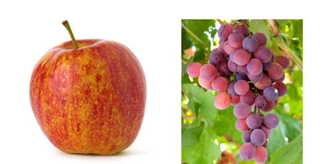 Trick your mind and your senses with this apple that tastes like a grape.