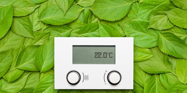 Electronic thermostat on leaves
