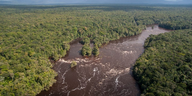 Forests and rivers of the Kaieteur.