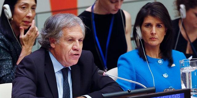 United Nations U.S. Ambassador Nikki Haley, right, listens as Organization of American States Secretary General Luis Almargo speaks during a U.N. meeting on human rights concerns in Venezuela, Monday Nov. 13, 2017 at U.N. headquarters.