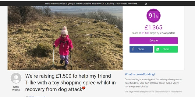 Tillie's friend Halle is hiking to raise money to cheer up her friend, who is currently recovering in a hospital.