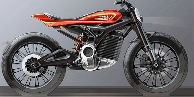 The company plans to follow the LiveWire with a lineup of smaller electric motorcycles and bikes.