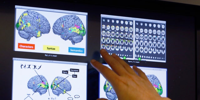 """Nov. 26, 2014: Leila Wehbe, a Ph.D. student at Carnegie Mellon University in Pittsburgh, displays images that used brain scans made from volunteers in a recent experiment while in her office. Images show a combination of data and graphics compiled as each word of a chapter of""""Harry Potter and the Sorcerer's Stone""""was flashed for half a second onto a screen inside a brain-scanning MRI machine."""