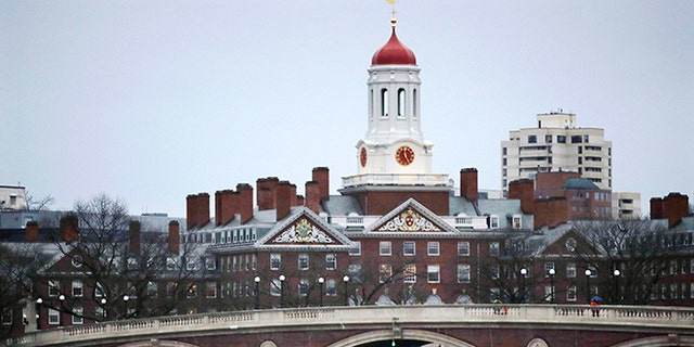 Activist groups released a report critical of Harvard University's billion-dollar investments in farmland around the world.