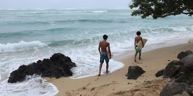 """The state's health department has said that rising nitrate levels linked to the cesspools, as well as nitrogen and phosphorus, """"can disrupt the sensitive ecosystems of Hawaii."""""""