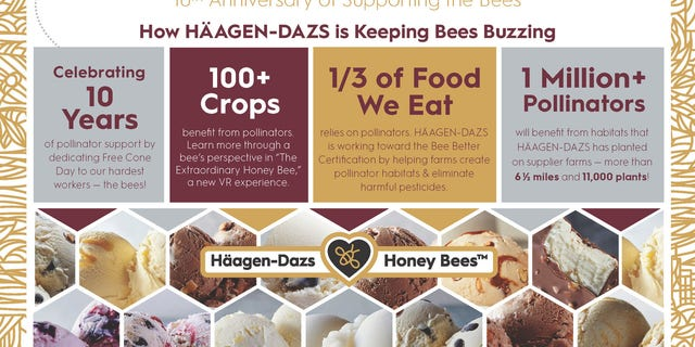 Bees are an important part of the major ice cream company, but are disappearing at alarming rates, the brand says.