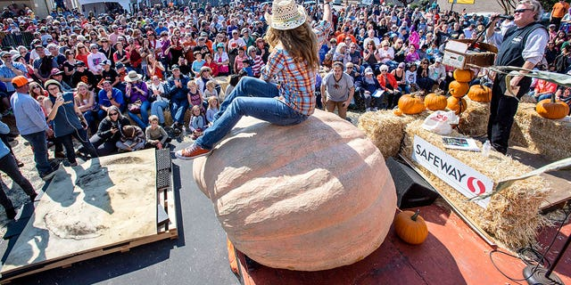 Cindy Tobek of Olympia, Wash., sits atop her second-place 2002-pound pumpkin at the 44th World Championship Pumpkin Weigh-Off.