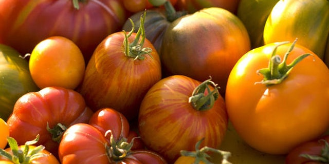 Several heirloom tomatoes