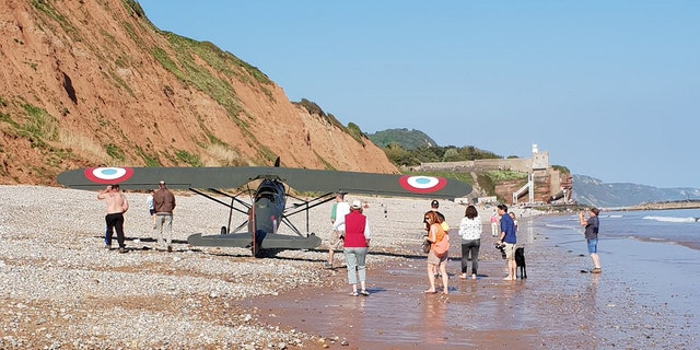 Onlookers and their dogs were able to clear out of the plane's path before Rockey set it down on the beach in Sidmouth, Devon.