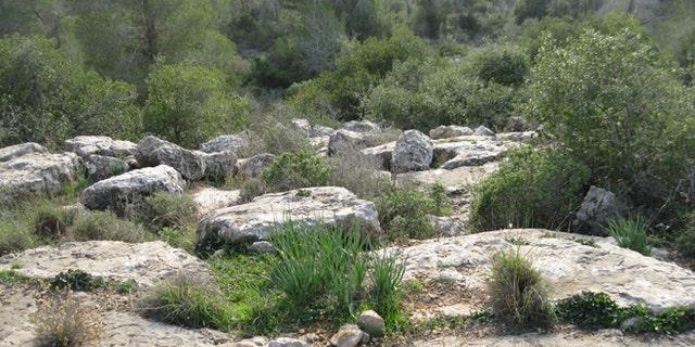 Wilson and Luken were hiking in this area, just outside of Jerusalem, when they were attacked.