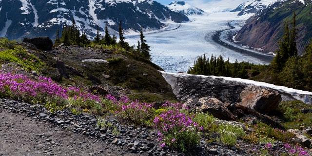 Salmon Glacier at Hyder Alaska