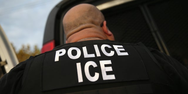 U.S. Immigration and Customs Enforcement (ICE), agents detain an immigrant on October 14, 2015 in Los Angeles, California. (Photo by John Moore/Getty Images)