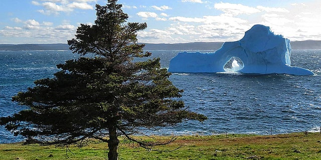 """The iceberg has been dubbed the """"beauty berg"""" (Mark Gray)"""