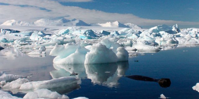 Scientists in Antarctica successfully reached Mercer Subglacial Lake on Dec. 26.