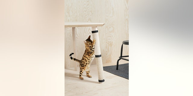 Ikea Launches Furniture Line For Pets Fox News