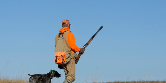 The ballot measure, which easily passed through the Republican-controlled state Senate in June in a 44-4 vote, has become a divisive topic in North Carolina, with its supporters arguing that the amendment would protect certain hunting practices while opponents claiming its little more than a ploy to get Republicans to head to the ballot box.