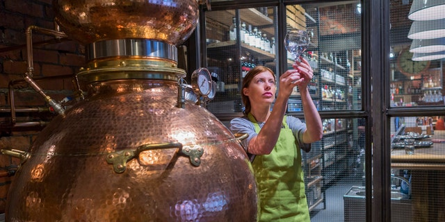 A female worker is sampling the alcohol produced from the copper distillery boiler. It is used to produce Gin and Whiskey.