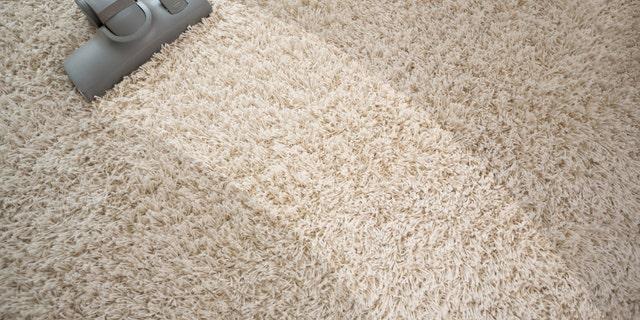 Vacuuming rough carpet in living room with vacuum cleaner
