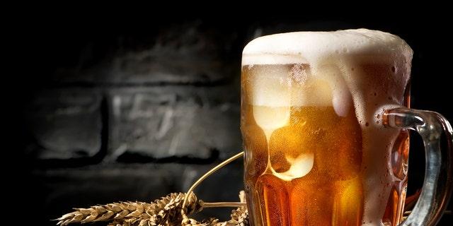 Light beer and wheat near brick wall