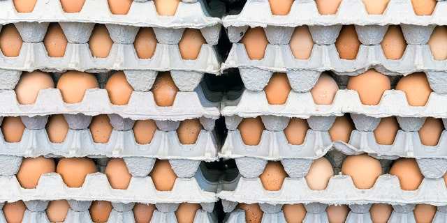 More than 207 million eggs were recalled due to possible salmonella contamination.