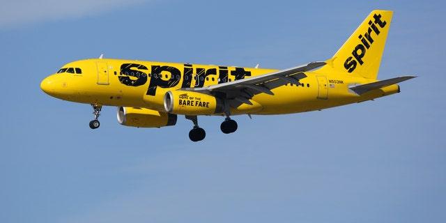 Westlake Legal Group istock-639008432 Spirit Airlines passengers scream as stowaway bat causes commotion on flight fox-news/travel/general/airlines fox news fnc/travel fnc f33dd511-b320-5d06-b659-82db98d898a6 article Alexandra Deabler