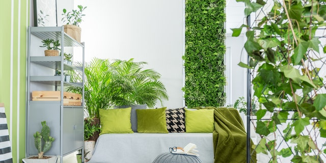 Give your home a wall of succulent boxes, framed moss or contemporary plant stands to usher in spring.