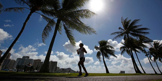 A woman jogs along a path in Ala Moana Park in Honolulu, Hawaii. REUTERS/Jim Young