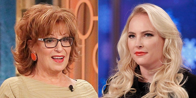 """The View"" hosts Meghan McCain and Joy Behar got so entangled in an argument on Wednesday that co-host Whoopi Goldberg had to step in to break up the fight."