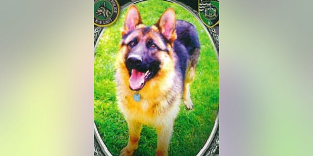 Rocky, a K9 officer with the Riverhead Police Department on Long Island, was killed early Sunday.