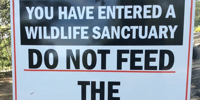 One officials hopes the state will place more warning signs advising visitors not to feed the wildlife.