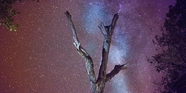 A starry night atop Mount Kilimanjaro, Tanzania.