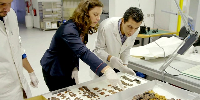 Lucy Skinner, an expert on ancient Egyptian leather at the U.K.'s University of Northampton, studies the armor