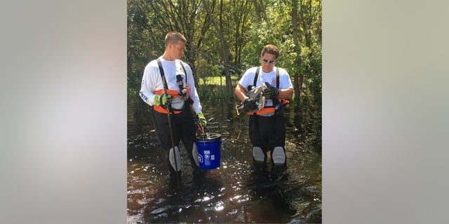Fire officials were able to save a blue heron while searching for the python.