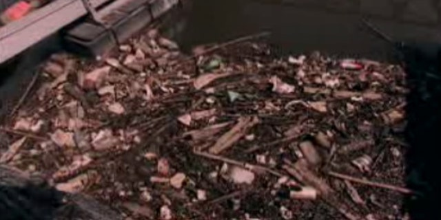 Four-and-a-half billion gallons of raw sewage seep into Lake Erie every year.