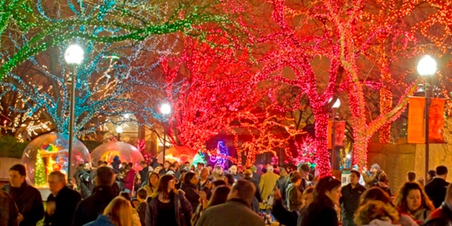 11/25/11 5:18:41 PM -- Lincoln Park Zoo Presents Zoo Lights . © Todd Rosenberg Photography 2011