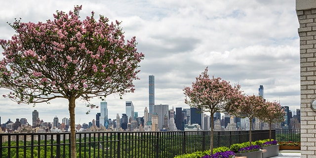 Project: 262 CPWLandscape Design: Town and Gardens LtdLocation: New York, NY